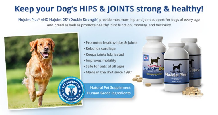 nujoint-plus-and-nujoint-ds-supplements4-